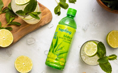 Aloe and Mint Limeade Spritzer